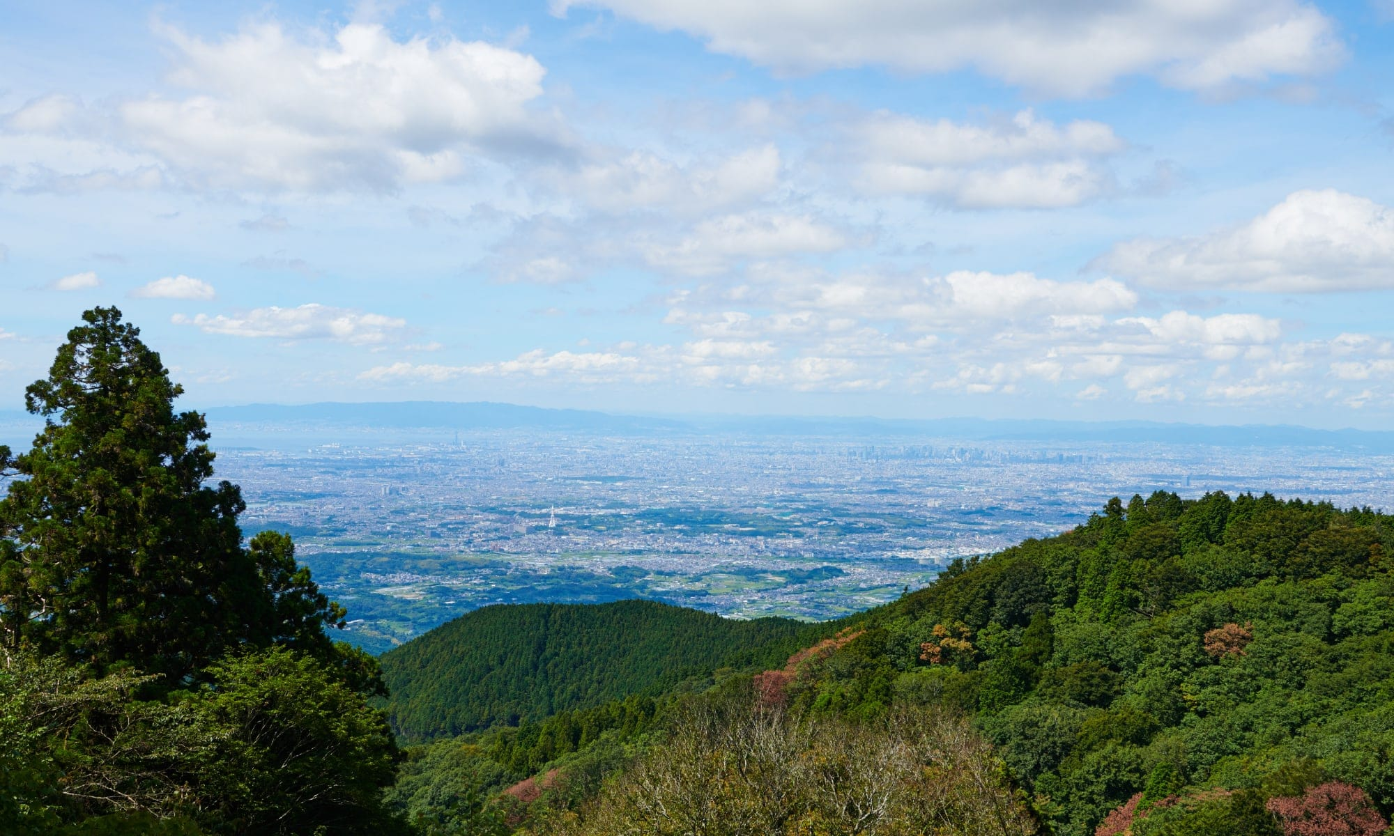 金剛山 山頂