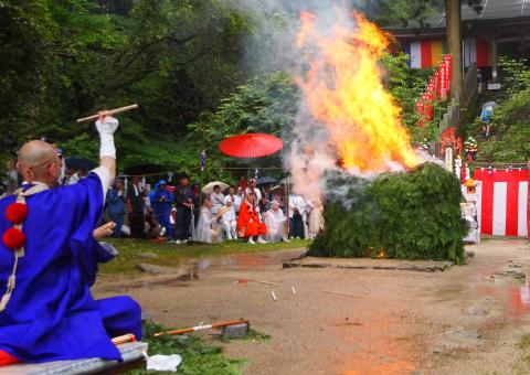 れんげ大祭